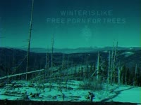 Holidays: Winter for Trees