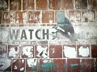 Watch Owl on Wall