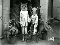 Owl Deer Kids