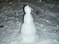 Mordecai Snow Pics