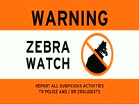 Warning: Zebra Watch
