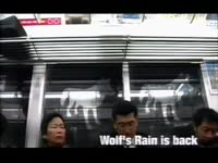 Wolf's Rain is Back