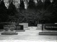 Harvey is Dead