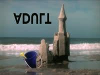 Adult Swim Sandcastle