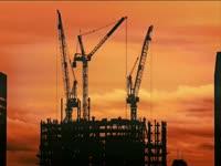 Tagged Videos: Cranes 02