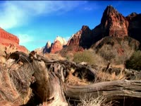 Tagged Videos: Zion Canyon