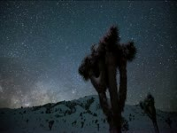 Tagged Videos: Snowy Owens Valley