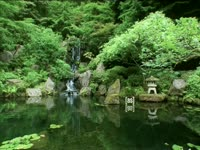 Tagged Videos: Japanese Garden