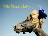 The Horse Salon