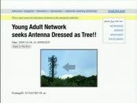 Seeking Antenna