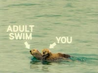 AS and You: Otters