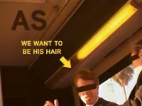 We Want to Be His Hair