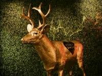 Gold AS Deer