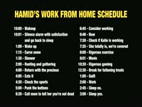 Work From Home: Hamid