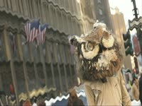 Owls: Blurry Building