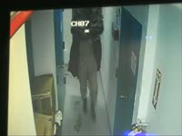 Owls: CCTV Footage