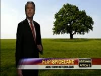 Flip's Tips: Trees