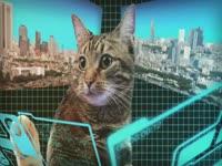 Mecha Cat Eye Lasers