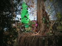 Omar Xmas Tree: Pop
