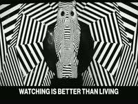 Watching Better than Living 2