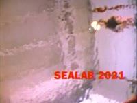 2001 Pool #16