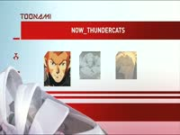 Toonami Now Thundercats 1
