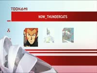 Toonami Now Thundercats 3