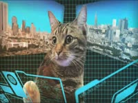 Meow Meow: Mecha Cat 2