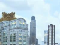 Meow Meow: Tiger Ships