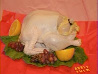 Turkey Birth