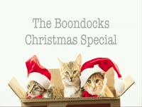 Holiday Special: Boondocks 3