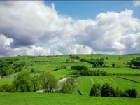 Tagged Videos: Pastureland
