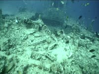 Tagged Videos: Shipwreck
