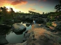 Tagged Videos: Kenyan Pond