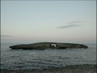Tagged Videos: Puka Island
